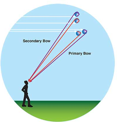 secondary-bow